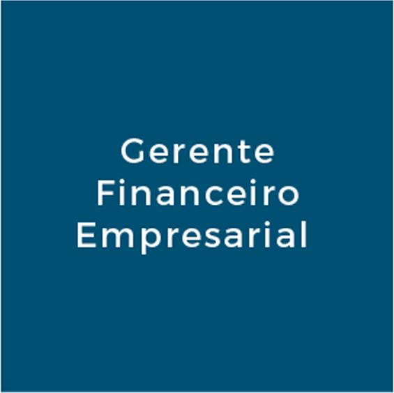 Gerente Financeiro Empresarial